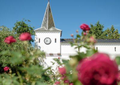 Dallund Castle galleri billede omgivelser 13